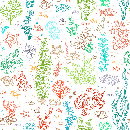 Seamless marine pattern. Vector illustration. Various colourful shell, algae, fish, starfish, bottle with a letter, key on white background.