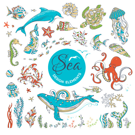 cartoon seahorse: Vector set of cartoon wild underwater sea life. Ocean animals and plants isolated on white. Whale, dolphin, turtle, fish, octopus, starfish, crab, shell, jellyfish, seahorse, algae. Colourful icons.