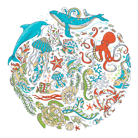 sealife: Circle vector set of sealife animals and plants over white background. Whale, dolphin, turtle, fish, starfish, octopus, crab, shell, jellyfish, algae. Underwater sea life. Colourful cartoon vector.