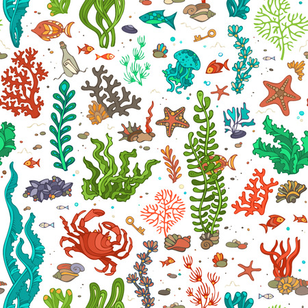 algae: Seamless cartoon marine pattern. Bright summer vector illustration. Various shell, algae, fish, starfish, bottle with a letter, key on white background. Illustration