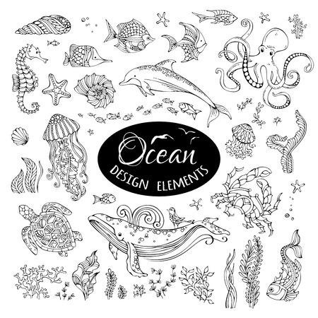 Wektor zestaw doodles wodą oceanu elementów. Wieloryb, delfin, żółw, ryby, rozgwiazdy, kraby, muszli, meduzy, ośmiornice, koniki morskie, wodorosty. Ręcznie rysowane sealife na białym tle.