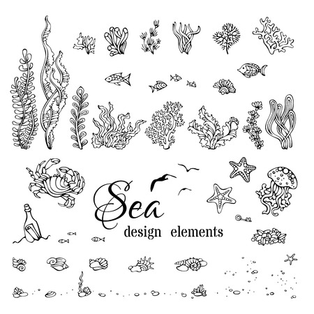Vector set of underwater marine design elements. Various black contours of shells, algae, fish, jellyfish, starfish, bottle with a letter, key, stones and bubbles isolated on white background.