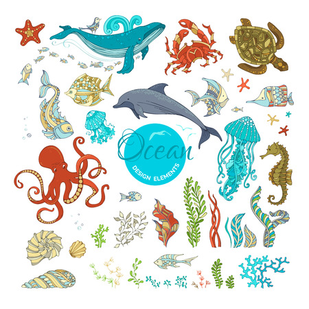 Vector set of cartoon wild animals and plants. Ocean design elements isolated on white. Whale, dolphin, octopus, turtle, fish, starfish, crab, shell, jellyfish, seahorse, seaweed. Underwater sealife.