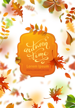Vector bright autumn leaves fall down. A lot of colourful leaves on white background. Nature vertical banner. Blurred background. Badge with text. Oak, rowan, maple and chestnut leaves.