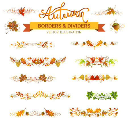 Set of autumn leaves borders, page decorations and dividers. Vector nature design elements isolated on white background. Oak, rowan, maple, chestnut, elm leaves and acorn. Swirls and flourishes.
