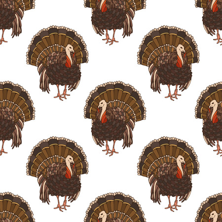 boundless: Vector seamless turkey pattern. Thanksgiving boundless background for your festive design. Harvest time.