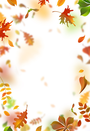 Vector autumn leaves blurred background. A lot of falling leaves on white background. Vertical backdrop. Oak, rowan, maple, chestnut and aspen leaves.
