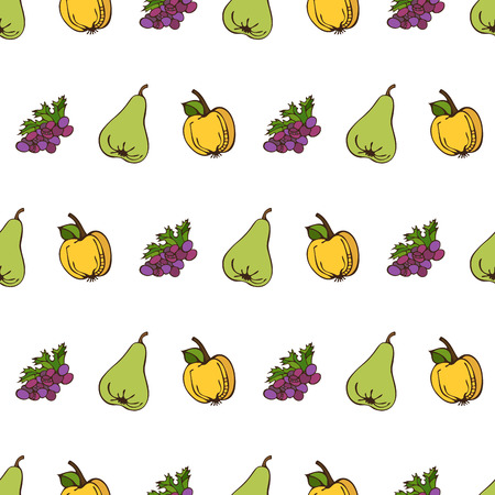 white grape: Vector seamless harvest pattern. Apple, grape and pear on white background. Boundless background for your design. Fall time. Thanksgiving day. Illustration