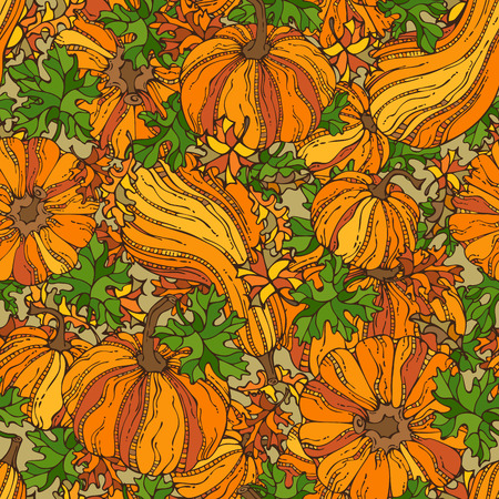 harvest time: Vector seamless pumpkin pattern. Set of various pumpkins and leaves. Thanksgiving day. Harvest time. Bright boundless background for your design.