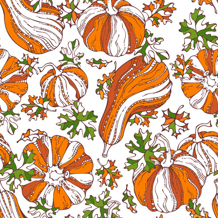 harvest time: Vector seamless pumpkin pattern. Set of various bright orange pumpkins and green leaves on white background. Thanksgiving day. Harvest time. Boundless background for your autumn design. Illustration