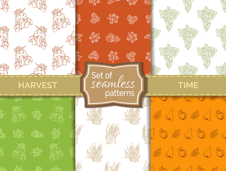 wheat harvest: Vector set of seamless duotone harvest patterns. Hand-drawn wheat, grape, autumn leaf, hazelnut and walnut, mushroom, apple and pear. Boundless hand-drawn sketch autumn backgrounds. Illustration