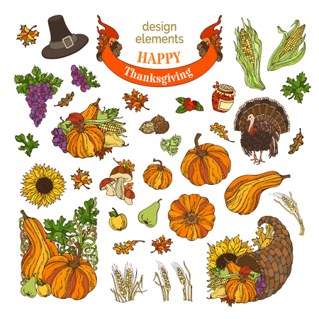 Vector set of Thanksgiving design elements isolated on white background. Traditional festive symbols and food. Turkey, cornucopia, pilgrims hat, pumpkin, corn, wheat, autumn leaves and others. Illustration