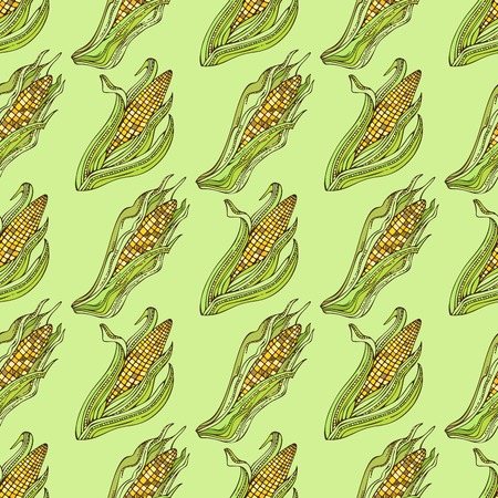 boundless: Vector seamless corn pattern. Thanksgiving day. Harvest time. Boundless background for your design.
