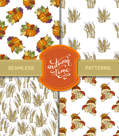 plenty: Vector set of seamless autumn patterns. Plenty of fruits and vegetables. Pumpkin, corn, wheat, mushroom, grape, apple, pear. Boundless harvest patterns. Fall time. Thanksgiving day.