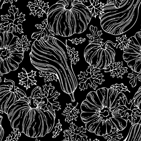 boundless: Vector seamless chalk pumpkin pattern. Set of various hand-drawn pumpkins and leaves on blackboard background. Thanksgiving day. Harvest time. Boundless background for your autumn design.