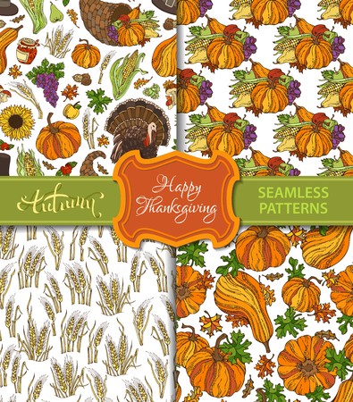 horn of plenty: Vector set of seamless Thanksgiving patterns. Corn, cornucopia, grape, pilgrim hat, pumpkin, turkey, wheat, cranberry autumn leaf mushroom sunflower apple pear Boundless harvest backgrounds