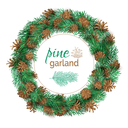 a sprig: Christmas pine round garland. Vector high detailed festive decoration isolated on white background. Pine branches and cones. Nature wreath.