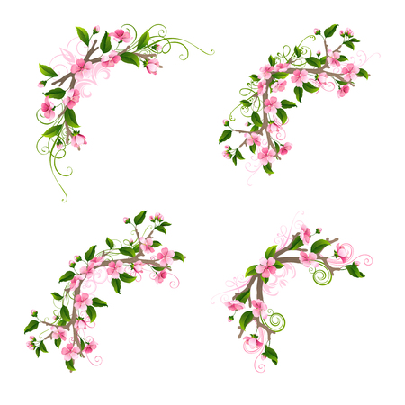 bourgeon: Pink cherry blossoms and leaves on tree branches. Hand-drawn flourishes. Isolated on white background.