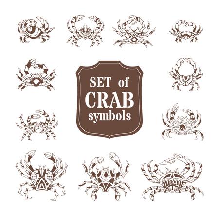 crustaceans: Vector set of various doodles crabs. Illustration