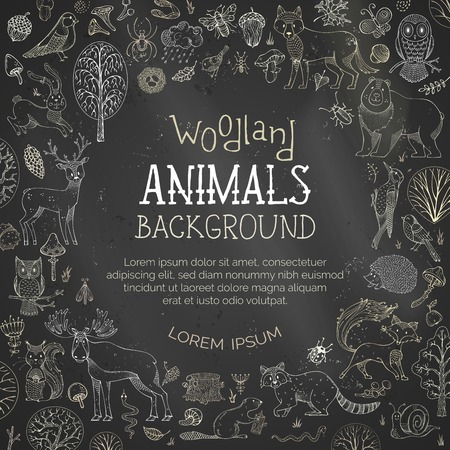 Vector chalk woodland blackboard background. Cute forest animals. Hand-drawn wolf, owl, rabbit, bear, deer, moose, fox, squirrel, hedgehog, racoon and other mammals and birds. Autumn trees and bushes.
