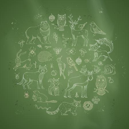 lapin: Vector set of chalk animals on blackboard background. Cute hedgehog, owl, beaver, hare, raccoon, snail, squirrel, deer, fox, bee, ant, mushroom, ladybug, elk, acorn, bug. Zoo hand-drawn collection.