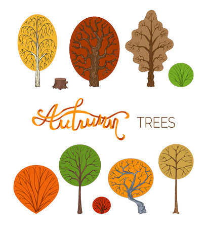Garabatos De Abedul, Roble, Castaño, Arbusto, Tocón De árbol Y Otros ...
