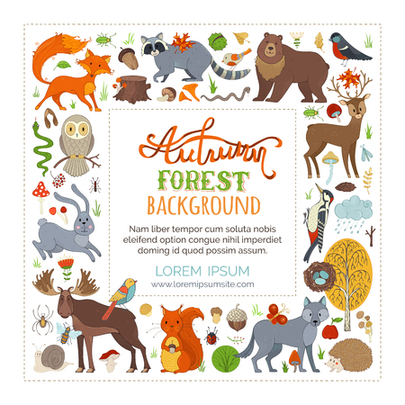Vector Set Of Wild Animals And Woodland Elements Adorable Moose Raccoon Hare