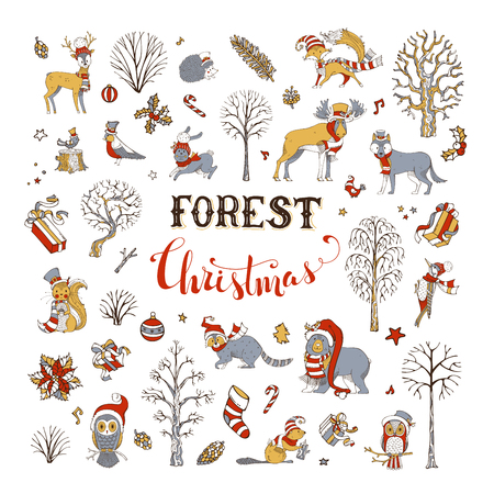 Winter trees and forest animals in Santa hat and scarf. Moose, bear, fox, wolf, deer, owl, hare, squirrel, raccoon, hedgehog, birds, gift boxes and Christmas baubles. Illustration