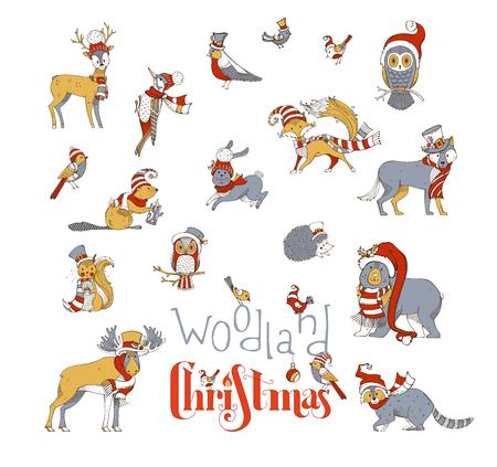 산타 모자 및 스카프를 착용하는 숲 동물의 벡터 설정합니다. 무스, 곰, 여우, 늑대, 사슴, 올빼미, 토끼, 다람쥐, 너구리, 고슴도치 및 새. 빨간색, 금색 일러스트