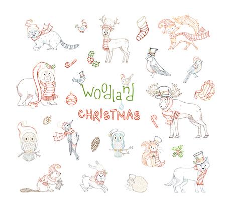 우드랜드 크리스마스 세트. 산타 모자와 겨울 스카프 입은 포리스트 동물의 벡터 설정합니다. 무스, 곰, 여우, 늑대, 사슴, 올빼미, 토끼, 다람쥐, 너구 일러스트