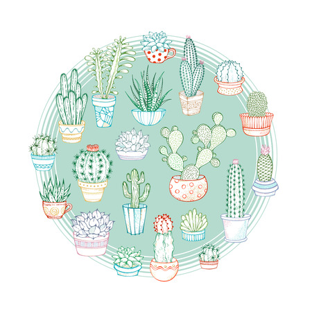 Set of indoor plants in flower pots and cups. Some of them are with prickles or flowers. Illustration