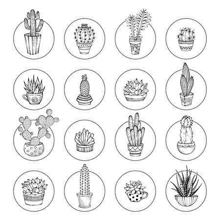 Vector Piktogramme von Kakteen und von saftigen Icon-Set