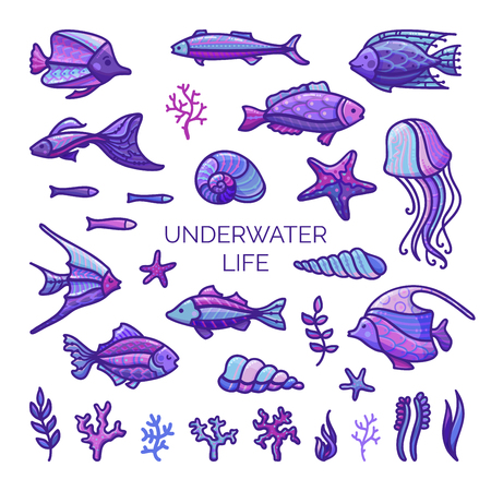 Underwater life design elements. Vector set of fish, sea plants and algae, shells and sea stars, jellyfish isolated on white background. Cartoon icons set.
