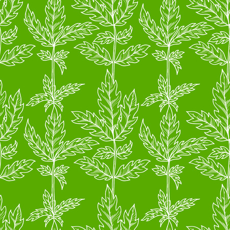 Vector seamless pattern of leaves. White contours of pinnate leaves on bright green background. Duotone summer boundless background. Tileable design element.
