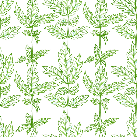 Vector seamless pattern of leaves. Outline green pinnate leaves on white background. Bright summer boundless background. Tileable design element.