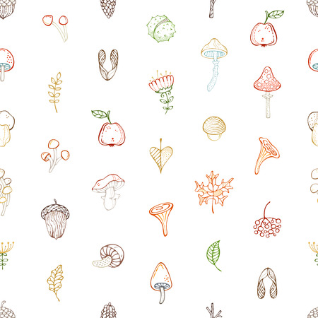 Colored outline maple seed, apple, tree branch, autumn leaf, mushroom, fir-cone, flower, acorn and chestnut. Bright boundless background for your design.