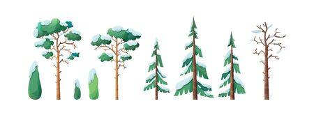 Snow-capped trees flat vector illustration set. Pines and bushes isolated on white background. Evergreen firs and spruces covered with snow. Bare, leafless trunk with dry branches. Winter season flora