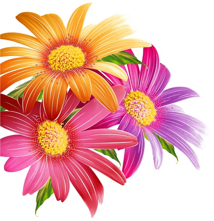 Beauty of three flowers Stock Photo - 13958992