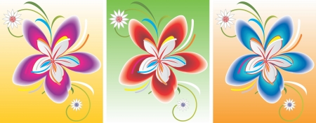 Flowers beauty Vector