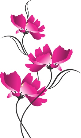 fashion design: Beautiful  flower Illustration