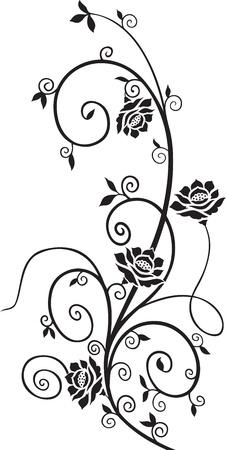 Elemento di design floreale Archivio Fotografico - 20298946
