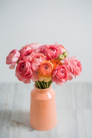 persian buttercup: bunch of pale pink ranunculus persian buttercup light background, wooden surface. glass vase.  spring, summer Stock Photo