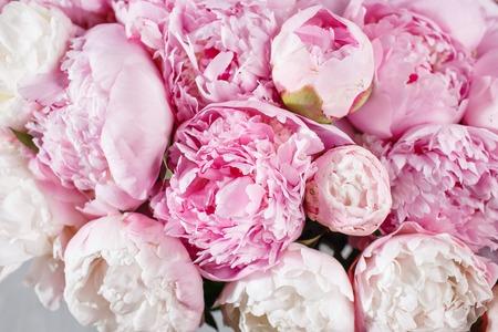 verse heldere bloeiende pioenrozen bloemen met dauw druppels op bloemblaadjes