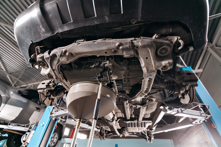 lifted: Change engine oil. working underneath a lifted car.