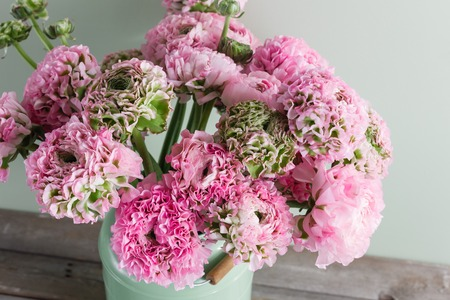 pink persian buttercup flowers. Curly peony ranunculus in green vintage can, copy space.