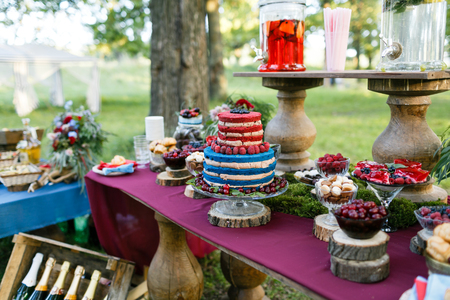 Wedding in the forest. cake with berries, Blueberries and raspberriess on the table. Fourchette, a lot of food on the table