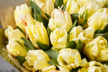 gently yellow pastel colors tulips in vase on wooden table. Gray wall