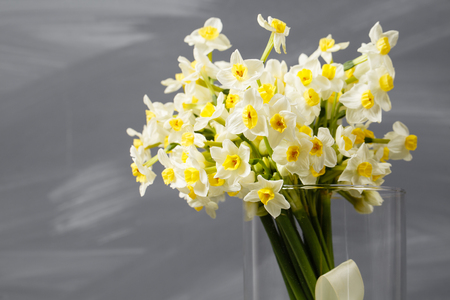 white narcissus. Spring Flower on retro table. Stylish office. Place for entries. Place for the inscription. Bouquet flowers in a vase. Banco de Imagens