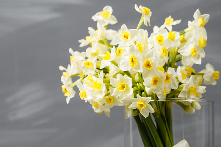 white narcissus. Spring Flower on retro table. Stylish office. Place for entries. Place for the inscription. Bouquet flowers in a vase. Stock Photo