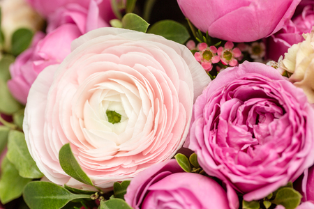 colorful background of flowers. the work of the florist at a flower shop